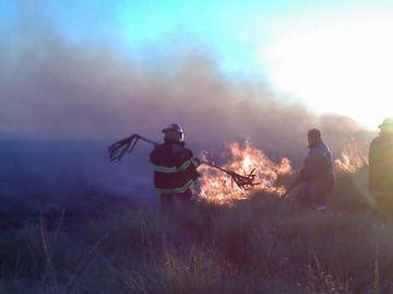 Los bomberos combaten las llamas.