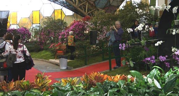 Una imagen usual: los visitantes se sacan fotos aprovechando las hermosas ornamentaciones florales.