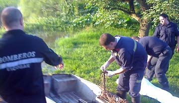 El inta capacit a m s de 70 productores hort colas for Jardin japones de escobar