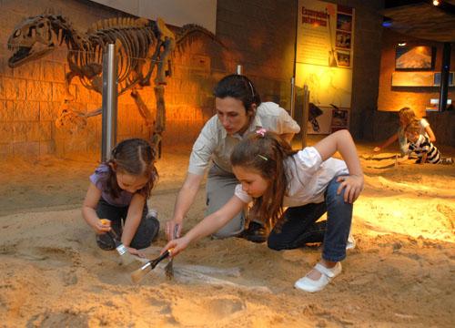 Grandes y chicos podrán desenterrar los restos de dos ejemplares que habitaron en Chubut hace 160 millones de años.