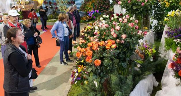 Un clásico de todas las primaveras. El sábado 24 comienza la 53° Fiesta Nacional de la Flor.