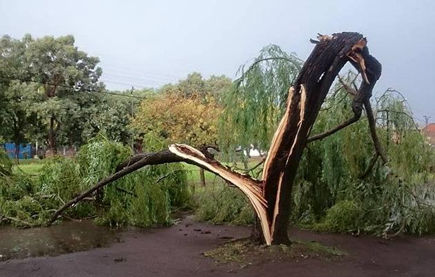 tormenta-8